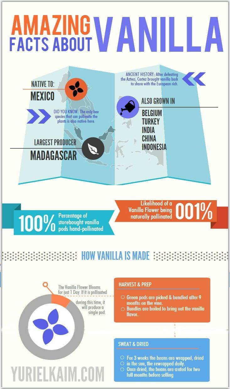 Vanilla Facts