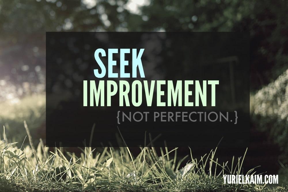 Seek Improvement Not Perfection | Yuri Elkaim