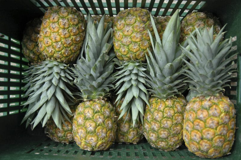 15 Fat Burning Foods - Pineapple
