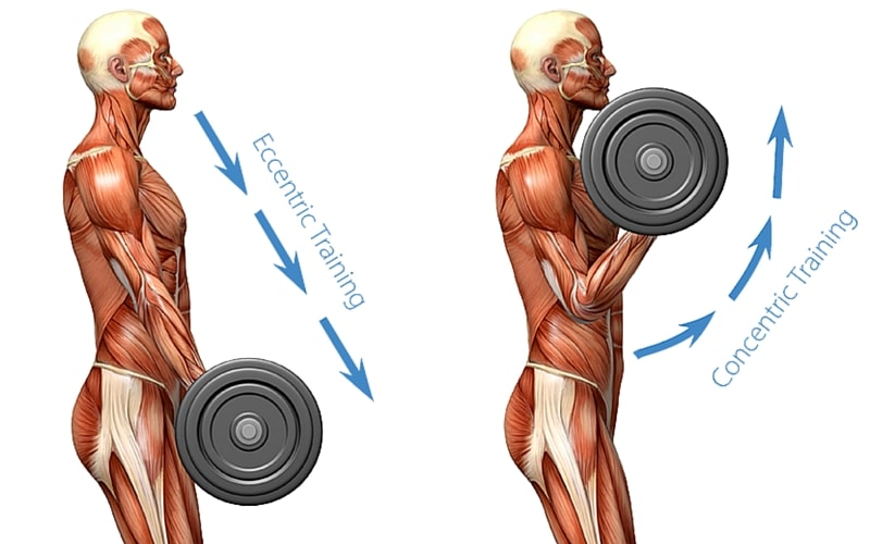 12 Big Fitness Trends and Health Predictions for 2016 - Eccentric Training