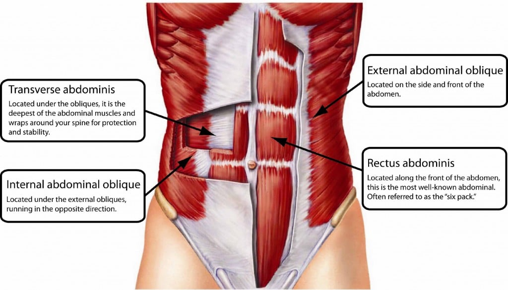 The 14 Best Abs Exercises - Abs Diagram