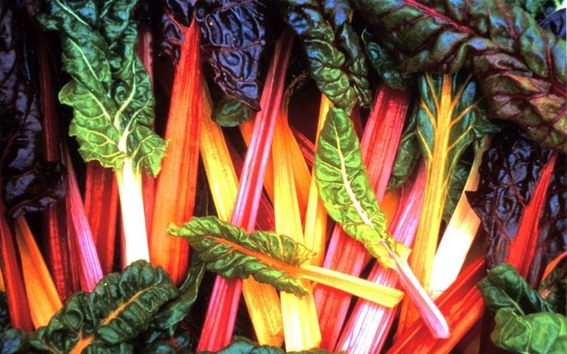 7 Liver-Healthy Foods - Green Leafy Vegetables