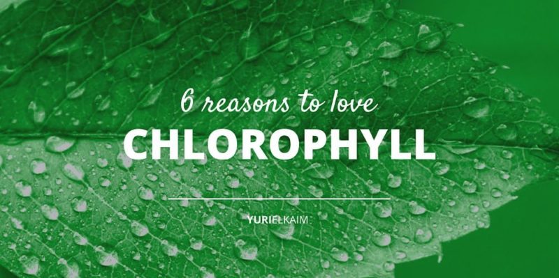 6 Health Benefits of Chlorophyll You Want
