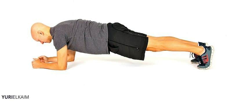 Activated Plank Beginner Abdominal Exercise