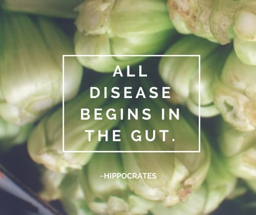 Hippocrates - All disease begins in the gut