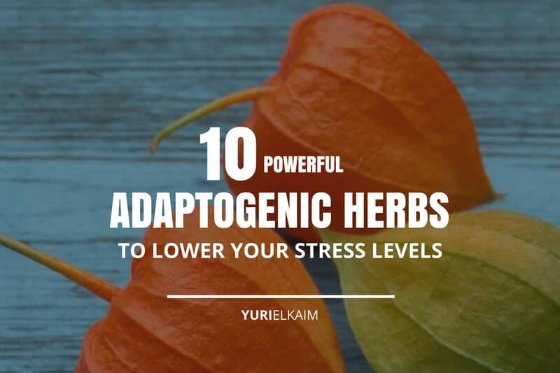 10 Powerful Adaptogenic Herbs That Will Lower Your Stress