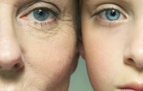 ages-and-skin-aging