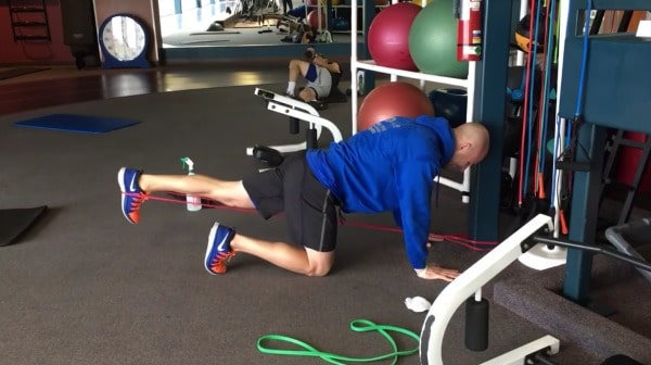 Glute Activation Exercises - Quadruped Banded Hip Extension