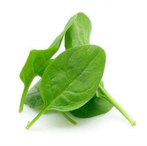 smoothie-add-ins-chlorophyll-rich-foods