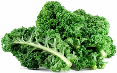 Foods Highest in Calcium - Kale
