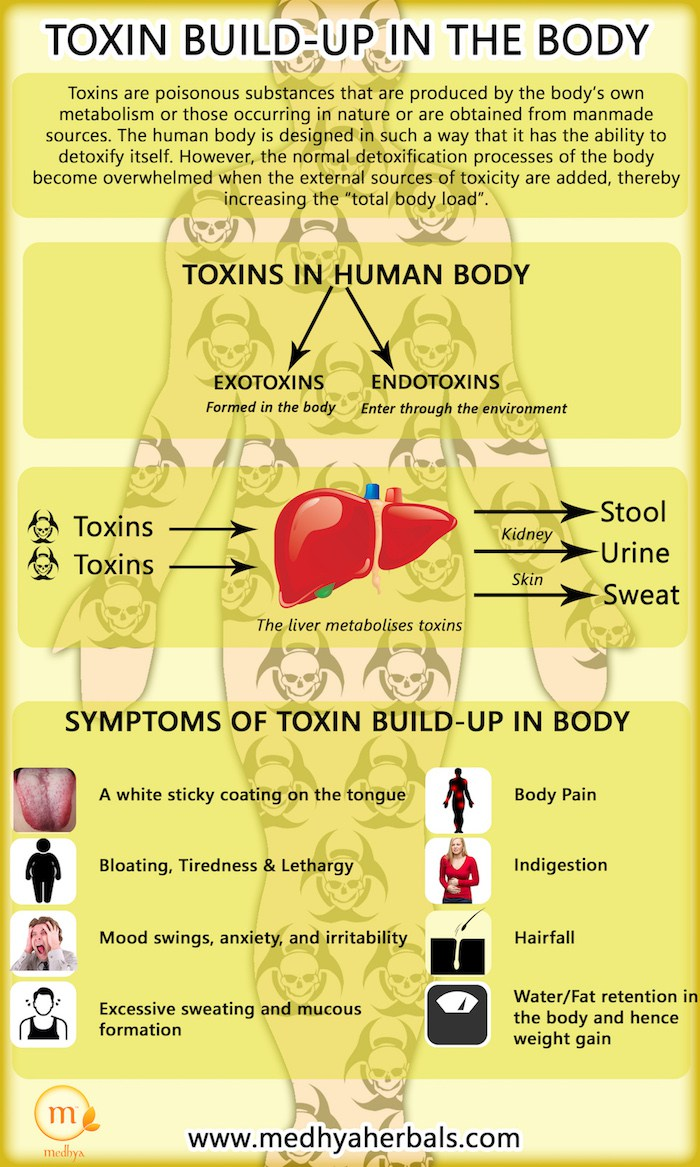 Toxin Build-Up in the Body